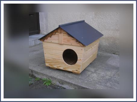abri pour chat extérieur
