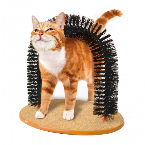 accessoire pour chat