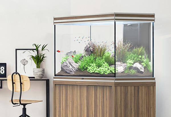 aquatlantis aquarium
