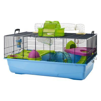cage pour hamster nain