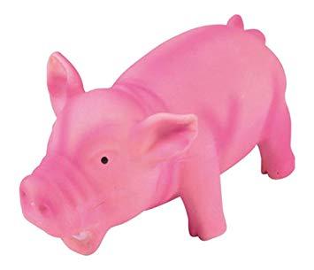 cochon latex pour chien