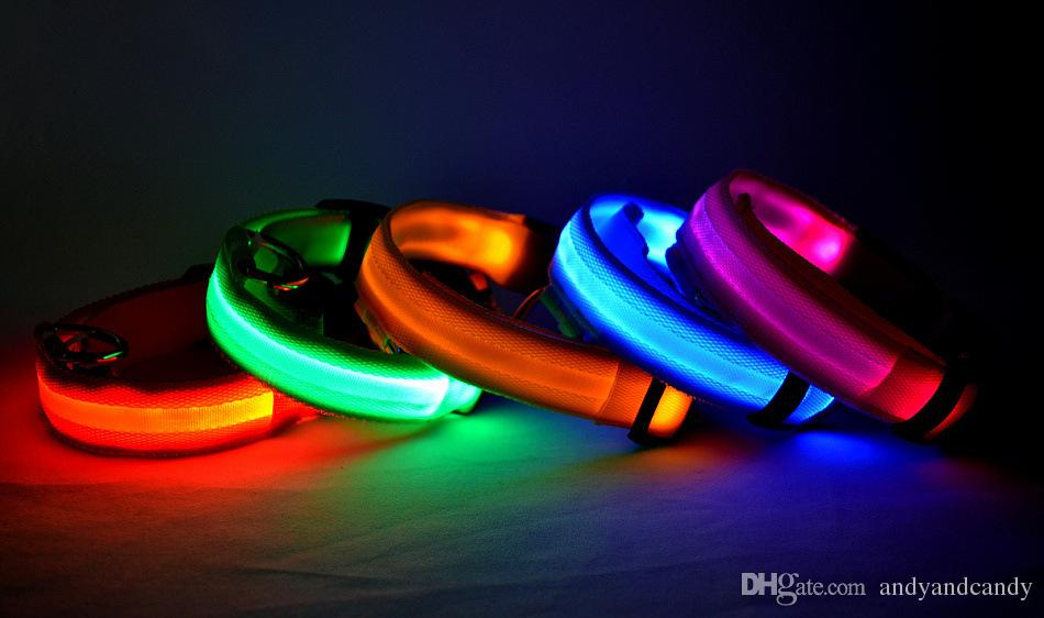 collier chien led