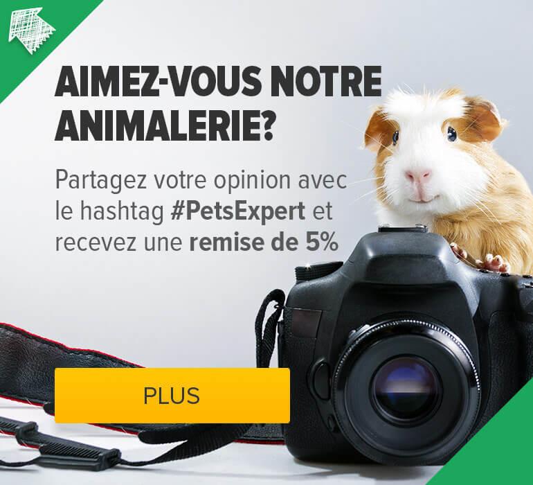 nourriture animaux en ligne