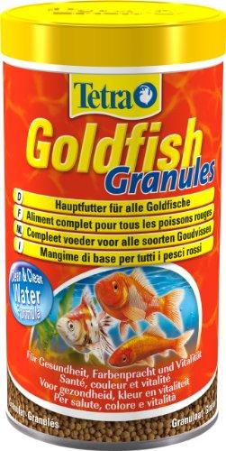 nourriture poisson aquarium