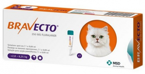 pipette chat